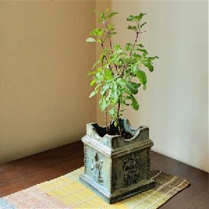 Tulsi Pot Manufacturers Suppliers Amp Exporters In India