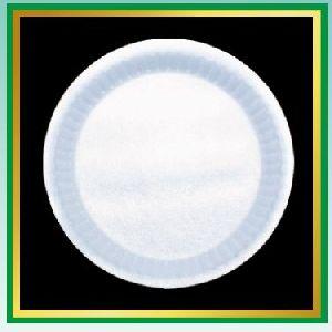 Quarter Disposable Plates