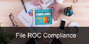 Roc File Compliances Services