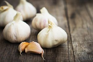 Fresh Garlic