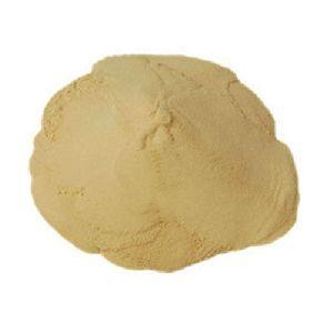 Soya Protein Hydrolysate Powder