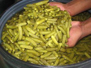 Processed Pickled Cucumber