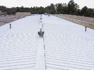 Metal Roof Protecting Services
