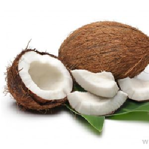 Coconut & Coconut Shell