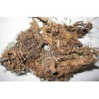 Dried Jatamansi Roots