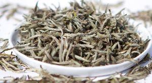 White Tea(Organic )