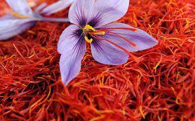 Fresh Saffron