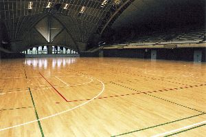Resilient And Textile Materials And Sports Flooring