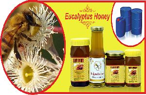 Eucalyptus Raw Honey