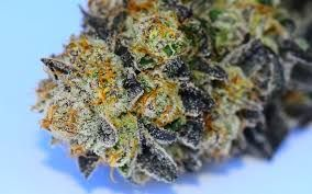 Platinum Huckleberry Cookies