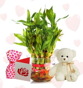 Layer Bamboo Plant White Teddy