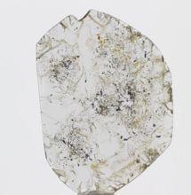 Loose Slice Natural Diamonds