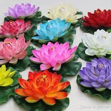 Natural Lotus Flower