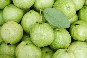 Natural Green Guava