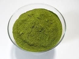 Dried Moringa Powder