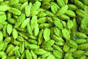 Green Elaichi
