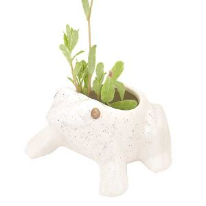 Ceramic White Hand Crafted Miniatures Frog Flower Pots