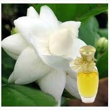 Natural & Alcohol Free Perfumes