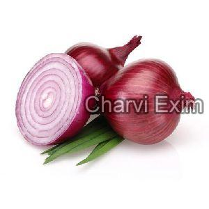 Fresh Indian Onion
