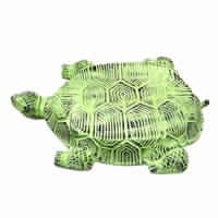 Tortoise Stepping Stone