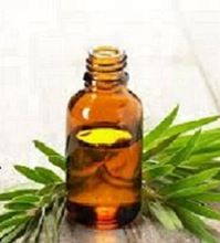 Natural Pure Tea Tree Oil