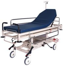 Medical Fowler Bed