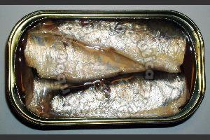 Best Canned Sardine From Morocco In Oil