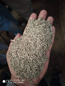 Dried Cumin Seed