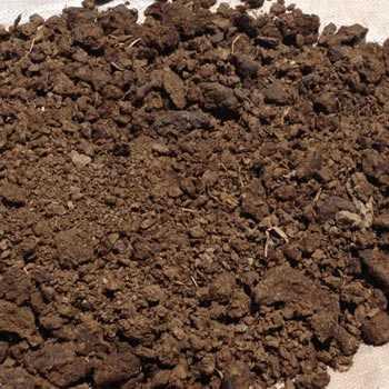 Natural Cow Dung Fertilizer
