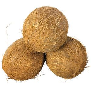 Fully Husked Coconut