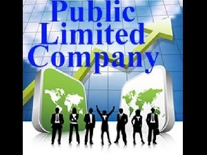 Public Limited Company Registration Services