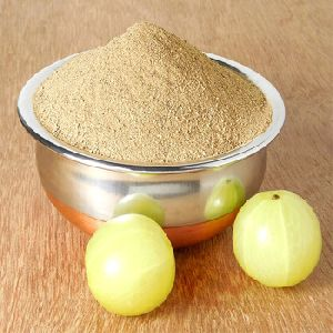 Amla Powder in Haryana - Manufacturers and Suppliers India