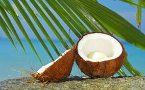 Coconut Oil Fatty Acids