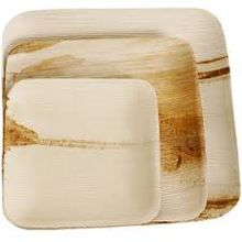 Natural Biodegradable Disposable Palm Leaf Plate