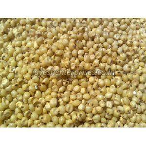 Pure Natural Jowar Seeds