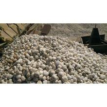 Round Tumbled River Pebble