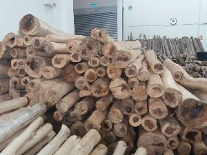 Wholesale High Quality Cultivated Malaysia Agarwood Wood Logs