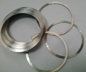 Stainless Steel Gasket