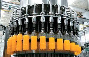 Rts Juice Making Plant