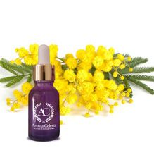 Sweet Mimosa Essential Oil With Rich Aroma