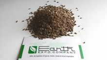 Dry Dill Seeds