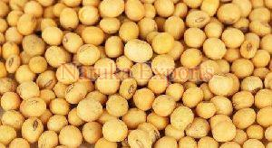 Pure Soybean Seeds