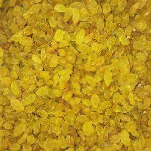 Organic Golden Raisins