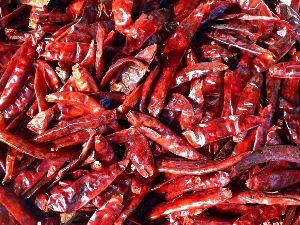Dry Red Chili Pods