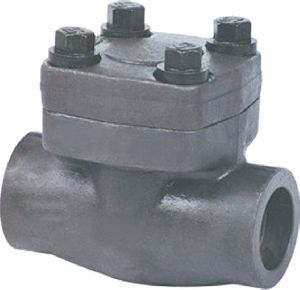 Forged Steel Check Valve
