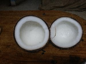 Semi husked coconut And dry coconut
