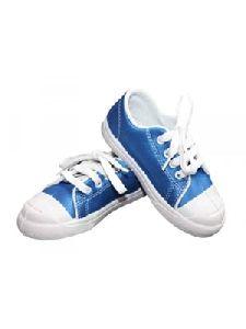Blue Canvas Shoes