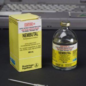 supply Nembutal sodium powder