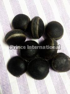 Latina Herbal Seeds