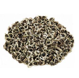 Best Quality Moringa PKM1 Seed